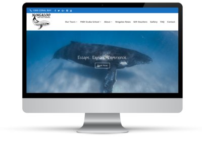Ningaloo Reef Dive & Snorkel – Web Design, E-Commerce + Marketing